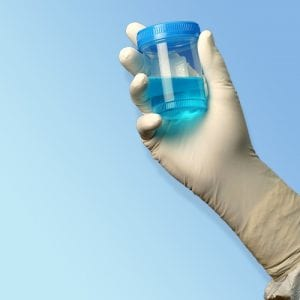 TechniGlove Nitrile Cleanroom Glove